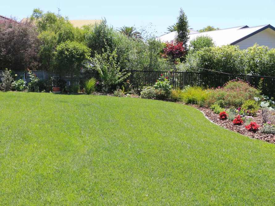 Lawn-Fertility-maintenance-Or-Restoration-04