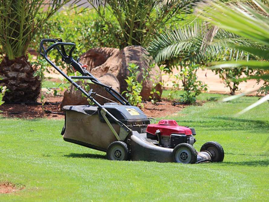 Lawn-mowing-relief-service-01