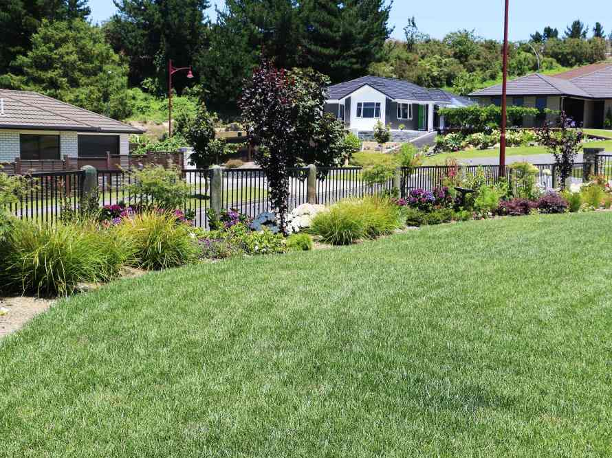 Lawn-preparation-and-new-lawns-02