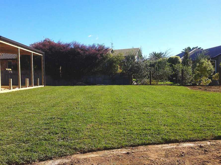 Lawn-preparation-and-new-lawns-04